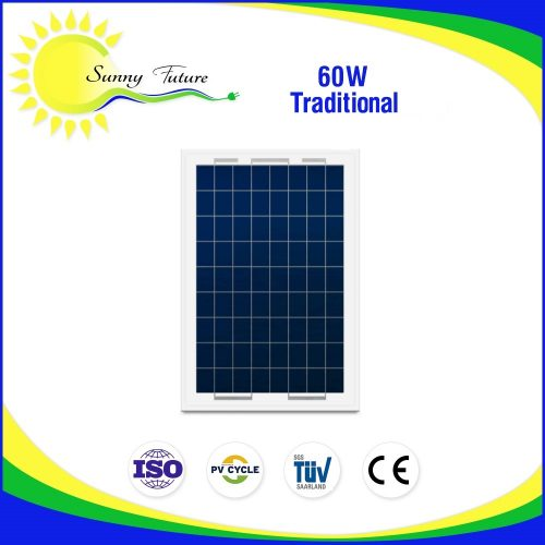 60 watt traditional panel